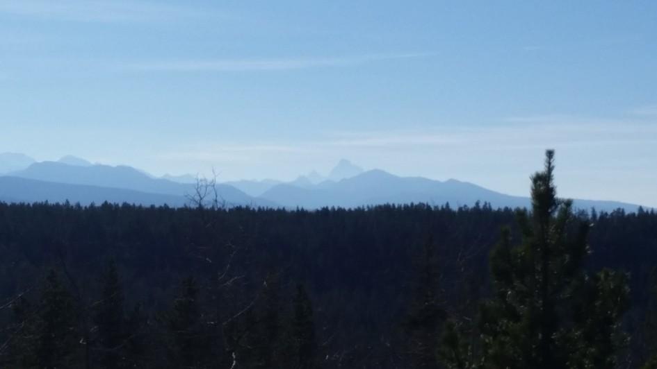 Teton Mountains from Yellowstone near Cave Falls (2)